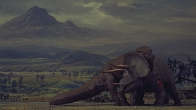 cgi, ms tyrannosaurus rex and triceratops fighting - triceratops stock videos and b-roll footage