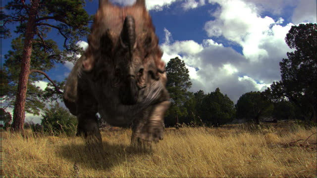 a tyrannosaurus rex chases a herd of einosauruses. - dinosaur stock videos & royalty-free footage