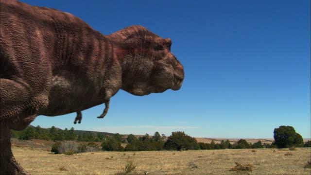vidéos et rushes de cgi, ms, pan, tyrannosaurus rex chasing for dinosaurs in distance - poursuivre