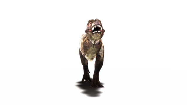 Tyrannosaurus rex dinosaur animation. RGB and image mask available upon request