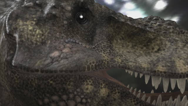 ecu tyrannosaurus rex dinosaur / oxford, oxfordshire, united kingdom - oxfordshire stock videos & royalty-free footage