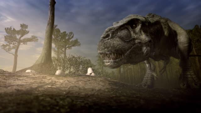 a tyrannosaurus rex examines a hatchling. - animal nest stock videos & royalty-free footage