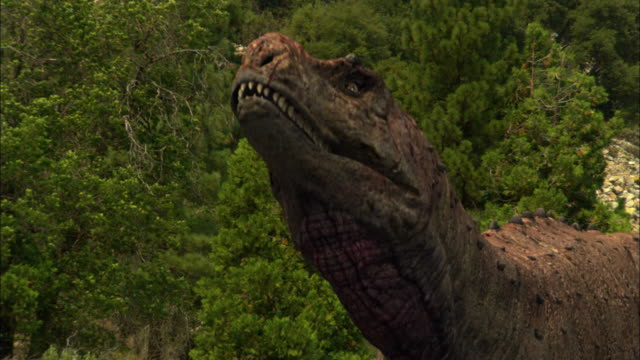 cgi, cu, tyrannosaurus rex, headshot - paleozoology stock videos and b-roll footage