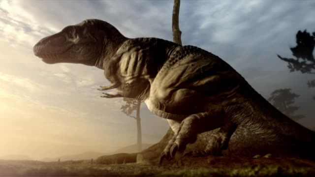 A Tyrannosaurus Rex lays eggs  in a computer generated animation.