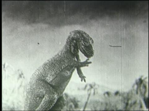 b/w profile tyrannosaurus rex licking fingers - tyrannosaurus rex stock videos and b-roll footage