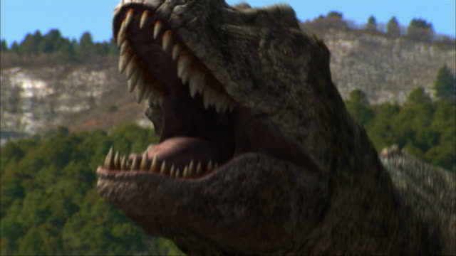 cgi, cu, tyrannosaurus rex roaring, headshot - paleozoology stock videos and b-roll footage