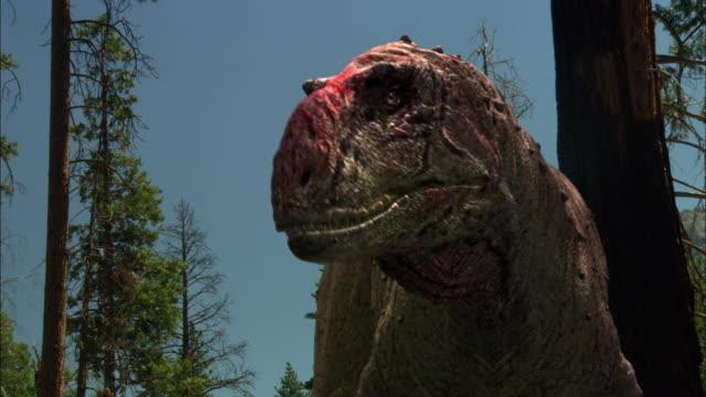 cgi, cu, la, tyrannosaurus rex roaring in forest, headshot - tyrannosaurus rex stock videos and b-roll footage