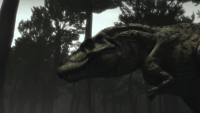 a tyrannosaurus rex stomps around a prehistoric forest. - tyrannosaurus rex stock videos and b-roll footage