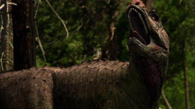cgi, cu, tyrannosaurus rex walking in forest - extinct stock videos and b-roll footage