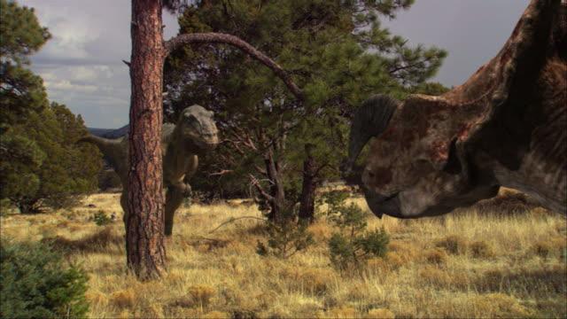 cgi, ms, tyrannosaurus rex walking toward einiosaurus, roaring - tyrannosaurus rex stock videos and b-roll footage