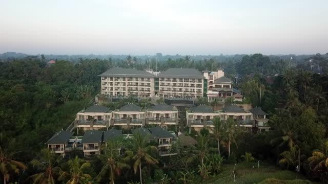 ubud rice terrace bali - majestic stock videos & royalty-free footage