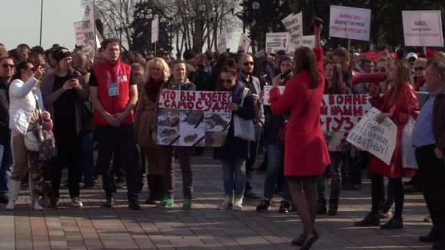 ukrainian animal rights activists hold placards and shout slogans ukraine without dog hunters and otherduring a rally with their dogs near the... - animal welfare stock videos and b-roll footage
