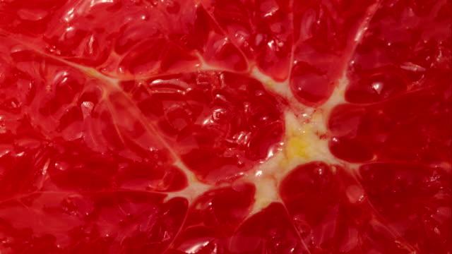 ultra nahaufnahme blood orange langsam drehst - zitrusfrucht stock-videos und b-roll-filmmaterial