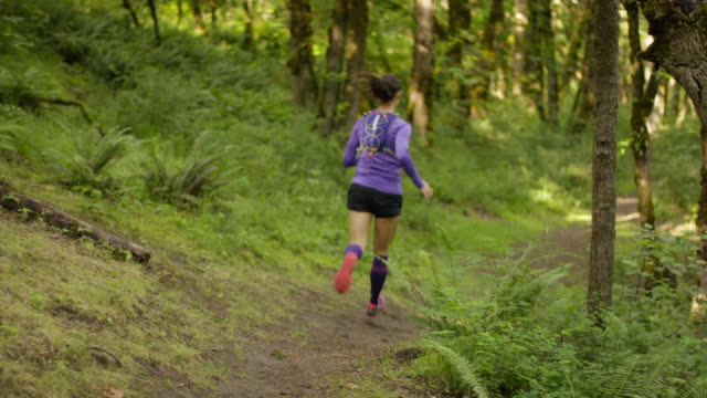 ultra marathon runner running outdoors in the woods - pectoral muscle stock videos and b-roll footage