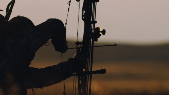 ultra slow motion, 200 frames per second, of a backlit bowhunter drawing back his bow in the beautiful sunset life. - hunting sport stock videos & royalty-free footage