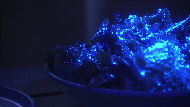 ultraviolet light glows over a bowl of lettuce during e-coli testing. - luce ultravioletta video stock e b–roll