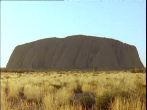 uluru from side view yellow bush grass blows gently in breeze - エアーズロック点の映像素材/bロール