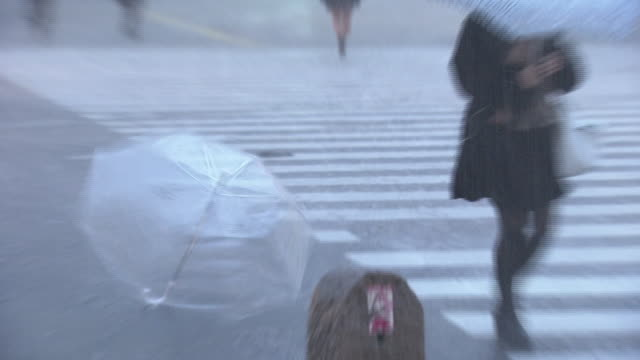 umbrella blown away in storm, tokyo, japan - shower stock videos & royalty-free footage