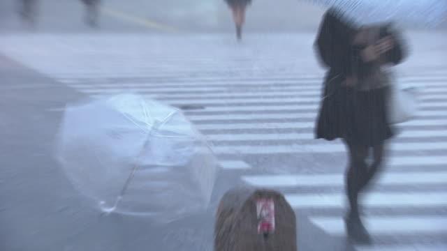 umbrella blown away in storm, tokyo, japan - 集中豪雨点の映像素材/bロール