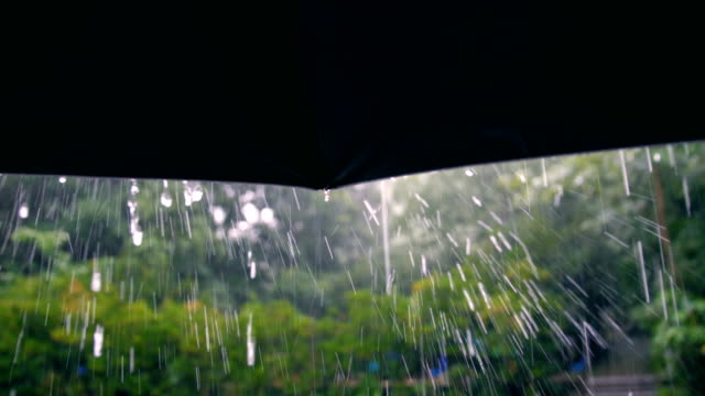 umbrella in rain weather - springtime stock videos & royalty-free footage