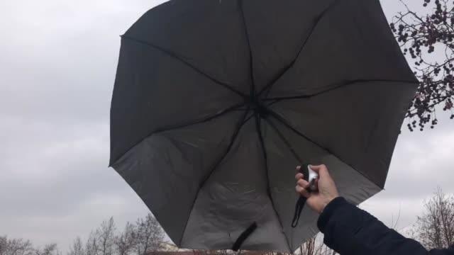 umbrella - ombrello video stock e b–roll