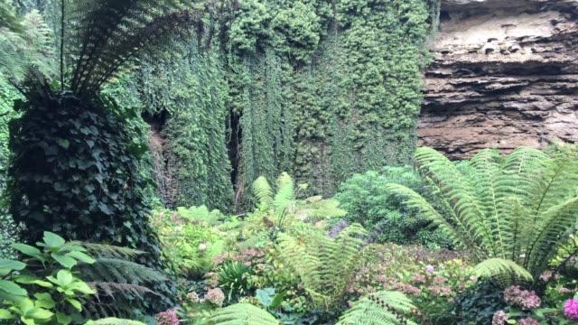 umpherston sinkhole at mount gambier limestone coast in south australia - south australia bildbanksvideor och videomaterial från bakom kulisserna