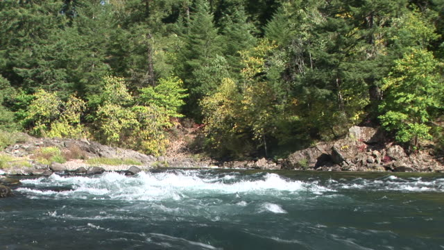 ms, umpqua river, oregon, usa - stationary process plate stock videos & royalty-free footage