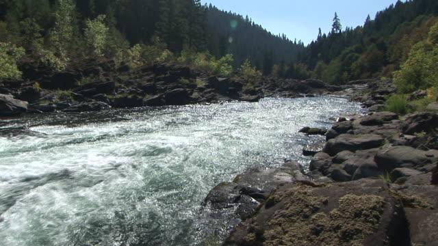 ws, umpqua river, oregon, usa - stationary process plate stock videos & royalty-free footage
