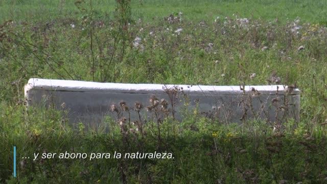"""un """"ataúd vivo"""" fabricado con hongos que aceleran la descomposición del cuerpo, ideado por un neerlandés, pretende ser la forma más ecológica de... - planeta stock videos & royalty-free footage"""