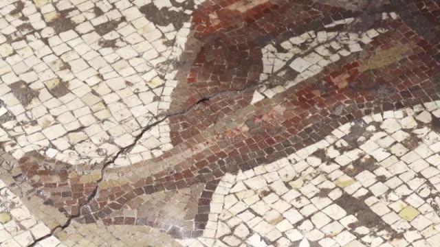 un equipo de arqueologos israelies mostro el jueves mosaico encontrado en el puerto de cesarea - arqueologia stock videos & royalty-free footage