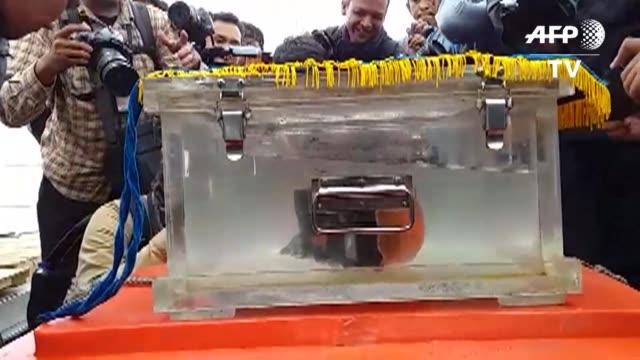 un equipo de buceadores hallo la segunda caja negra del avion de lion air que se estrello frente a las costas de indonesia el pasado 29 de octubre... - indonesia stock videos & royalty-free footage