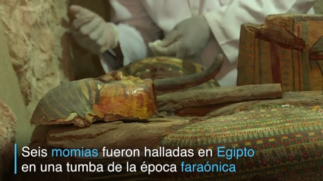 un grupo de arqueologos descubrio seis momias sarcofagos de madera de vivos colores y un millar de pequenas figuras funerarias en una tumba de la... - madera material stock videos & royalty-free footage