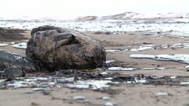 vídeos de stock, filmes e b-roll de un operativo de limpieza trata de rescatar las playas de santa barbara en el oeste de california afectadas por el vertido de crudo de este martes que... - vazamento de óleo
