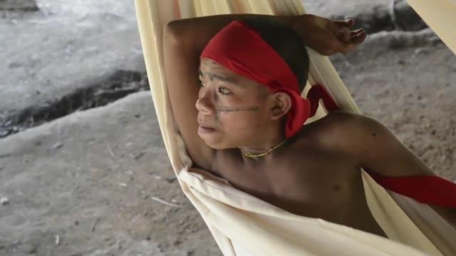 vídeos y material grabado en eventos de stock de un recorrido selva adentro en la comunidad indígena yanomami irotatheri de la amazona venezolana en busca de rastros de la masacre denunciada por... - yanomami