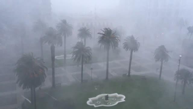 un severo temporal con vientos de mas de 100 km/ h golpeo el martes a montevideo dejando arboles derribados y edificos danados - human artery stock videos & royalty-free footage