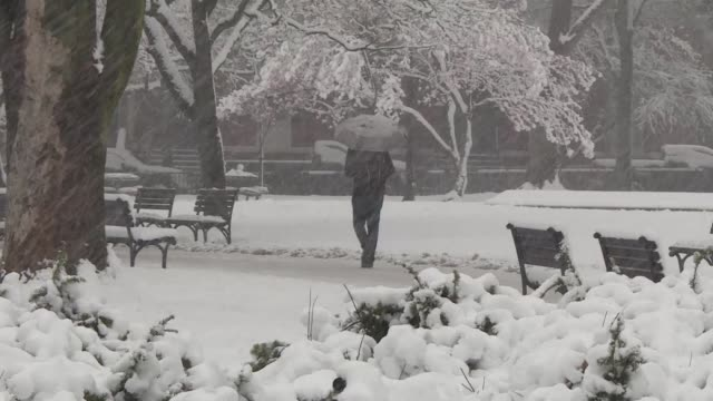 vídeos y material grabado en eventos de stock de una inusual nevasca en la flamante primavera boreal la cuarta en tres semanas en el este de estados unidos provoco el miercoles la anulacion de mas... - ee.uu