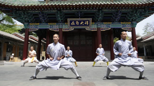 unarmed shaolin students perform synchronous kung-fu moves. - asiatischer kampfsport stock-videos und b-roll-filmmaterial