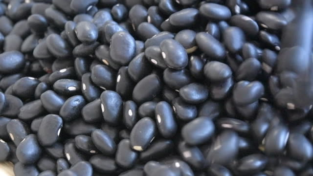 uncooked black beans falling in 4x slow motion - bean stock videos & royalty-free footage