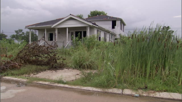 uncut grass and an abandoned house are on a street flooded after hurricane katrina.. - hurricane katrina stock videos and b-roll footage