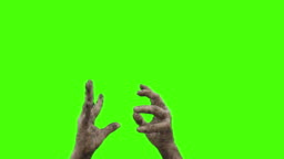 Undead - Hands and forearms of a zombie who is rising from the dead - sequence