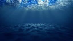 Under Sea Animation