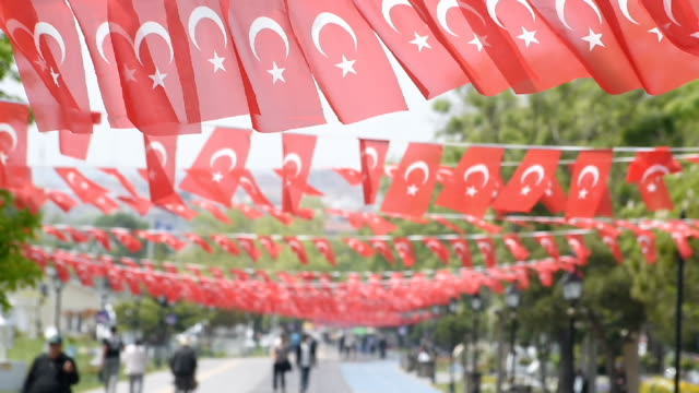Under The Turkish Flags