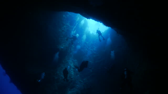 undersea cave - sottomarino subacqueo video stock e b–roll