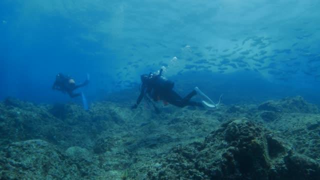 undersea coral reef - underwater camera stock videos & royalty-free footage
