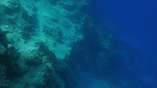 Undersea hillside