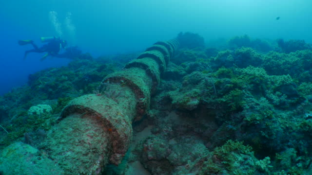 undersea pipe built on coral colony - pipe stock videos & royalty-free footage