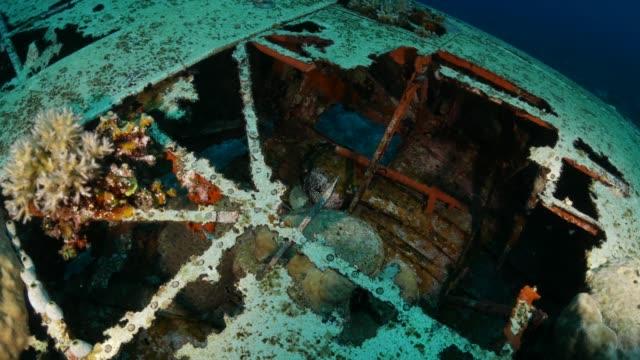 stockvideo's en b-roll-footage met onderzeese wrak, japanse watervliegtuig, palau - scheepswrak