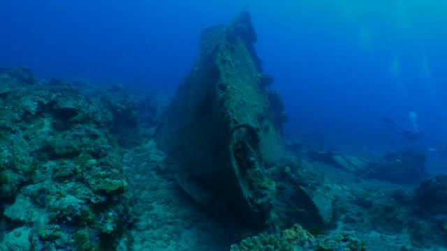 undervattenskabeln vraket, taiwan - dykarperspektiv bildbanksvideor och videomaterial från bakom kulisserna