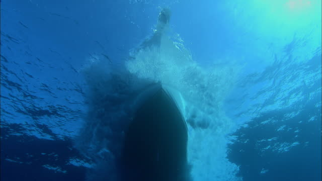underside of motor boat as it passes overhead, caribbean, bahamas - 小型船舶点の映像素材/bロール