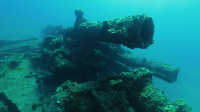 underwater, a sunk vessel in ogasawara, japan - wrack stock-videos und b-roll-filmmaterial